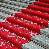 Tappeto Runner Rosso - Red Carpet - in Moquette di Poliestere - al Mezzo Metro - Larghezza 100 cm - Multiuso per passerella, Ingresso Negozio, casa, Ufficio, Cerimonia, Matrimonio