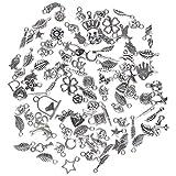ILOVEDIY 100Stück Mixed Charms Beads Anhänger für Armband Schmuck DIY