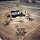 Songtexte von Still in the Woods - Rootless Tree