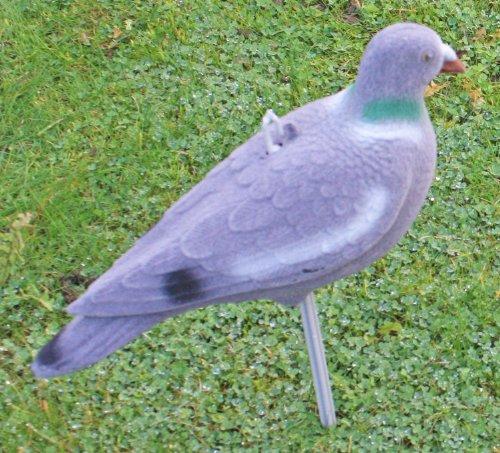 Nitehawk - Appelant pigeon pour la chasse / le tir - pigeon entier - floqué