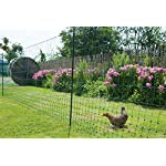 Kerbl Unisex's TR-CRL0765 Poultry Netting Non-electrifiable Single Prong, Clear, 112 cm x 50 m 7