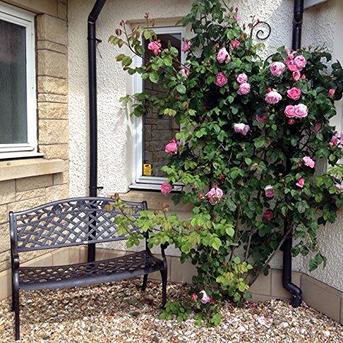 Lazy Susan - ROSE Gartenbank aus Aluminium