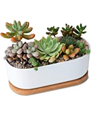 White Ceramic Planter with Removable Bamboo Tray (A). Oval White Ceramic Planter