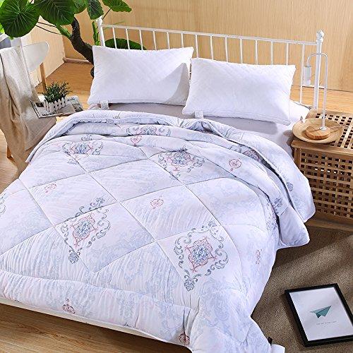 Polyester Betten/Bettwaren Wärme Voll/Queen/Voll/Twin Size Daunendecke Bettdecke einfügen, hypoallergen, genäht, Feder Quilting Federdecke, 2 × 2,3 m (3 Kg)