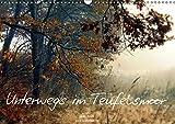 Unterwegs im Teufelsmoor (Wandkalender 2019 DIN A3 quer): Atemberaubender Kalender mit faszinierenden Fotos des Teufelsmoores bei Bremen (Monatskalender, 14 Seiten ) (CALVENDO Natur)