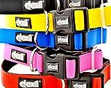 LEBENSLANGE GARANTIE! Dexil Elite Klasse Luxus Neoprene Padded Extra Strong justierbarer Haustier Hundehalsband S M L XL ( Klein-Medium 25-43 cm, rot)