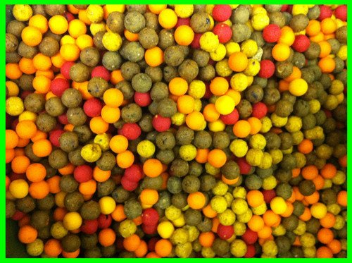 10mm Boilies Mega Mix - Tutti / Pineapple / Scopex / Anchovy etc pack of 100 carp baits Test