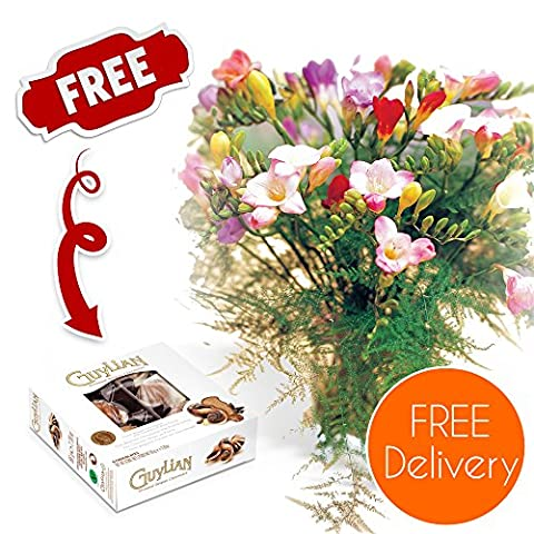 Fresh Flowers Delivered - Delivery Included - 20 Mixed Freesias Bouquet with Chocolates, Flower Food and Bonus Ebook Guide - Perfect for birthdays, anniversaries and thank you