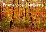 Promenade d'automne : Une promenade haute en couleurs et pleine de sérénité. Calendrier mural A4 horizontal 2016