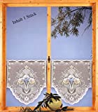 Gardine Fensterbild Scheibengardine hochwertiger Jaquard farbig HxB 88x60 cm - Vorhang in geprüfter Qualität - Ökotex …auspacken, aufhängen, fertig! Typ100