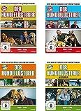 Der Hundeflüsterer - Staffel 1-4 (22 DVDs)