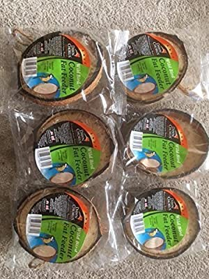 Wild Bird Feeder Half Coconuts - Pack of 6 from koko