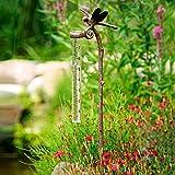 Gärtner Pötschke Regenmesser Libelle