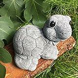 Antikas - Schildkröte Garten Dekoration Tierfiguren - Gartenteich Figuren Beton frostfest