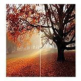 Homyl 2er-Set Vorhang Schal Verdunkelungsvorhang BLICKDICHT für Wohnzimmer Schlafzimmer, Auswahl - Ahornbaum