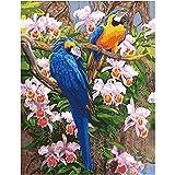 GUUTOP Zwei Papageientiere DIY digitales Gemälde digitales modernes Kinderwandbild für Kinderbilderrahmen