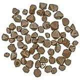 Naturosphère - Minéraux et fossiles C25 - Pierres brutes octaèdres de magnétite - 0.5 à 1.5 cm - 15 grammes...
