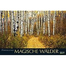 Magische Wälder 2017: PhotoArt Panorama Kalender
