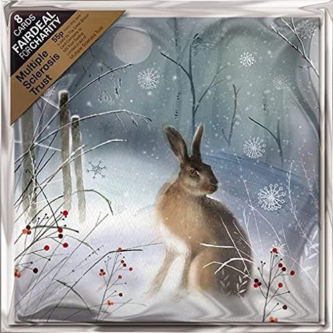 Cartes de Noël caritatives (Alm1413)–Magical lièvre–Lot de 8cartes–Vendu en direction de la multiple Sclerosis Trust