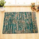 YYUTR Fußmatte für Innen- und Außenbereich, Eingangsbereich, Garage, Terrasse, Schuhteppich, Flanell, Style10, 16x24(IN)/40x60 cm