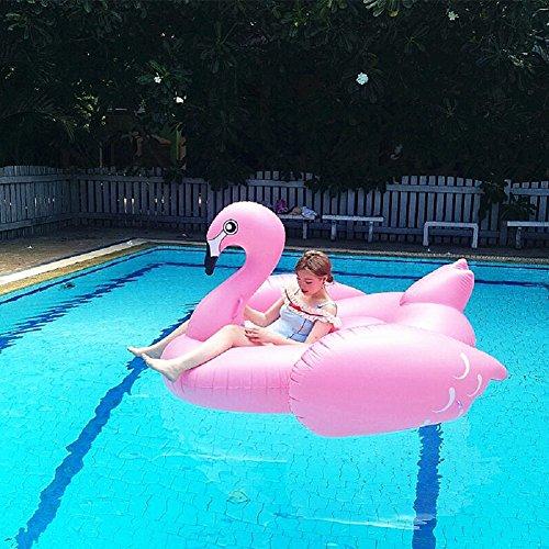 Schwimmtier – Kexin Lin – Flamingo - 2