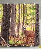 BBFhome Hem Gewichte Polyester Gewebe Duschvorhang mit Haken whitetail Hirsch S Dekorationen gesetztes Geweih natürlichen Wald 180 ( L ) x 180 (H) CM