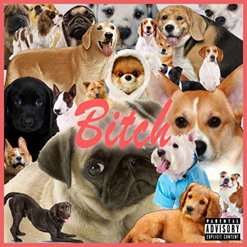Bitch [Explicit]