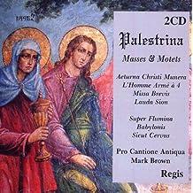 Masses & Motets 2CDs