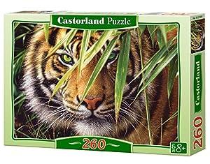 CASTORLAND-1527200 Puzle, Multicolor (CSB27200)