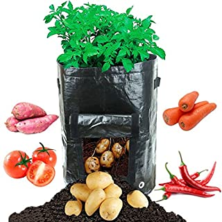 allimity 2-Pack 10 Gallon Planting Grow Bags for Root Vegetables Potato Carrot Taro Radish Carrots