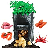 Best Taro Roots - allimity 2-Pack 10 Gallon Planting Grow Bags Review
