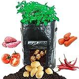 ALLIMITY 2-Pack 10 Gallon Grow Borse per la coltivazione di ortaggi a radice Carote carote Taro Ravanello Carote Fragola