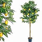 PLANTASIA Zitronenbraum, Echtholzstamm, Kunstbaum, Kunstpflanze - 184 cm, Schadstoffgeprüft