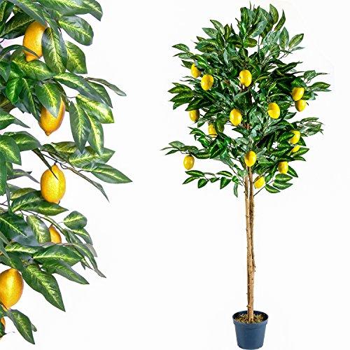 Zitronenbaum Kunstpflanze mit Echtholzstamm und Zitronen Kunstbaum – 184 cm groß - 2