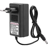 Neufday 【𝐏𝐫𝐨𝐦𝐨𝒛𝐢𝐨𝐧𝐞 𝐝𝐢 𝐏𝐚𝐬𝐪𝐮𝐚】 Adattatore di Alimentazione per Batteria al Litio a Ricarica sicura 21V2A(EU Plug)