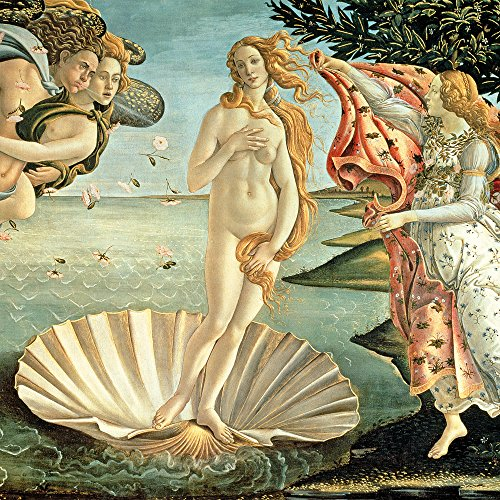 Apple iPhone SE Case Skin Sticker aus Vinyl-Folie Aufkleber Sandro Botticelli The Birth of Venus Kunst DesignSkins® glänzend