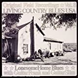 LIVING COUNTRY BLUES USA VOL. 8 - LONESOME HOME BL