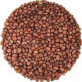 Food to Live Semillas de rábano orgánicas certificadas para brotar 24.9 Kg