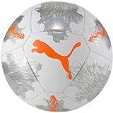 PUMA Spin träningsbollar