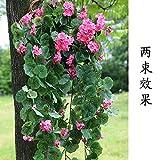 LVLIDAN künstliche Blume Kunstblumen Fake Seide an der Wand hängenden Rattan String Rebe Begonia Rosa