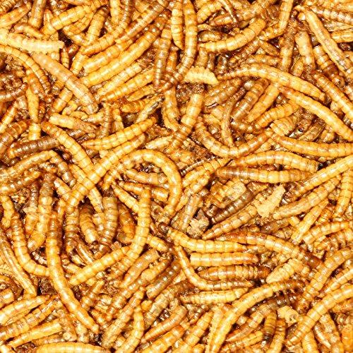 5 kg Mehlwürmer getrocknet - Vogelfutter Fisch-Futter Nager Vögel Reptilien Igel