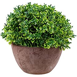 Artificial Planta Suerte Hojas de Hierba Bonsai Macetas de Flores Jardín Casa Decoración - Verde
