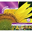 Suttons Seeds 139800 Sunflower Seed Collection