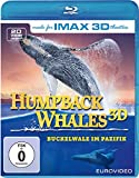 Humpback Whales (inkl. 2D-Version) kostenlos online stream