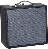 Ashbury AA-10G Amplificateur combo 10 W Noir