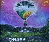 Q-Base 2010