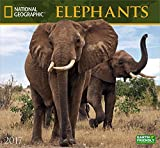 National Geographic Elephants 2017 Wall Calendar by National Geographic Society (2016-08-01)