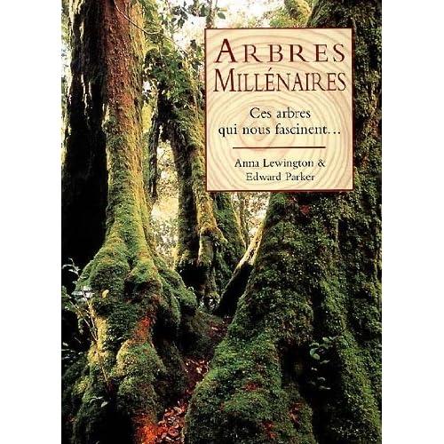 Arbres millenaires : Ces arbres qui nous fascinent...