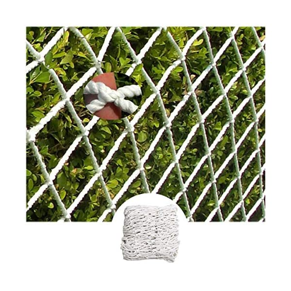 """Stairway Net - Baby Safety Rail Nets Goal for Soccer Heavy Duty Trellis Netting for Climbing Plants White 6mm/10cm (Size : 10x10m) Hwt's net ▲Multi-purpose protection net: family balcony and railing balcony stairs safety net railing stairs anti-cat climbing, anti-fall and other enhanced protection; wall, home, theme party hotel, hotel, cafe, bookstore, restaurant, decoration, hanging, etc. ▲Child safety net size * rope diameter: 10cm * 6mm (4 """"* 15/64) length * width: please purchase according to your actual needs. We have any other size (rope diameter, mesh, length * width) rope net, Support customization. If you have any questions or needs, please contact us. ▲Safety net material: made of nylon braided rope, hand-tightened. It has beautiful colors and economical sun protection. Suitable for all kinds of interior decoration, anti-fall and protection. 1"""