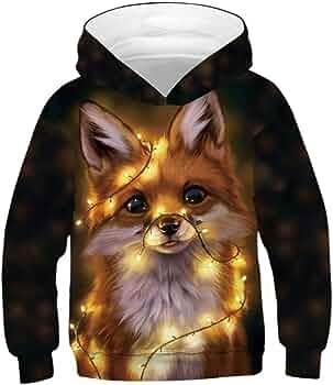 H.eternal Kid Baby Boy Hooded Sweatshirts Cartoon Fox Blouse Hoodies Top Sweater Long Sleeve T-Shirt Christmas